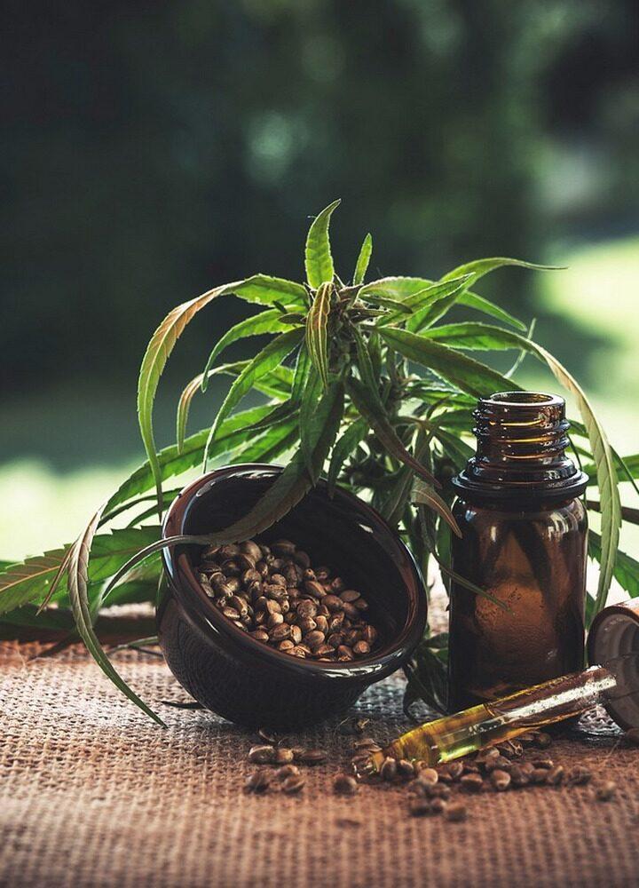 Olej CBD Sequoyalife, czyli prosty wybór dla naturalnego wsparcia organizmu