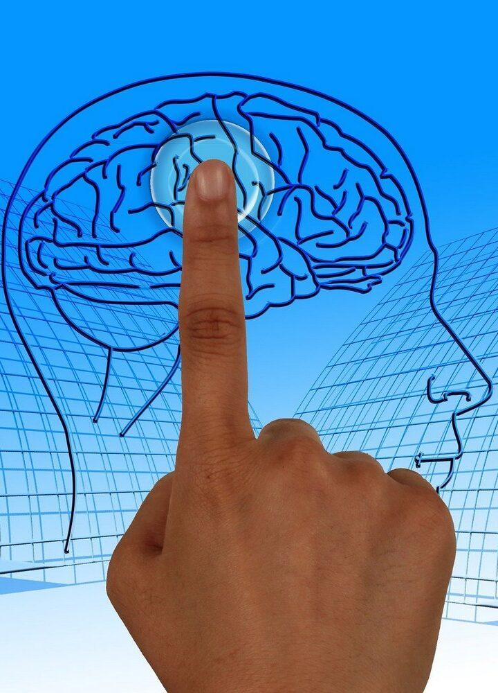 Ludzie, zwierzęta, maszyny – co to znaczy myśleć?