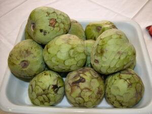 Czerymoja / Cherimoya - owoc flaszowca peruwiańskiego
